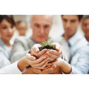 Marketing Fulfillment growth