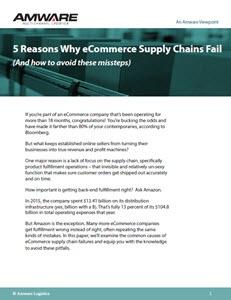 5-eCommerce-Pitfalls-231x300.jpg